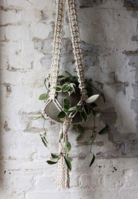 گیاهان مناسب دکوراسیون تابستانی,تغییر تابستانی فضای خانه